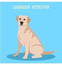 Labrador retriever vector
