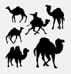 Camel and dromedaries animal silhouette vector