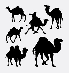 Camel and dromedaries animal silhouette vector image vector image