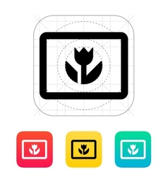 Macro photo icon vector