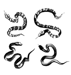 Snakes in traditional Chinese ink painting vector image