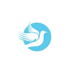 bird wing dove logo template vector image vector image