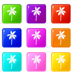 palm tree set 9 vector image vector image