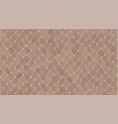 snake skin pattern vector image