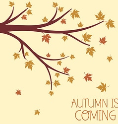 An autumn design with autumnal branch vector