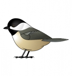 Chickadee vector