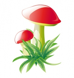 mushrooms nature symbol vector image vector image