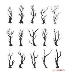 set of dead trees and branches vector image