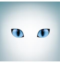 Blue cat eyes vector