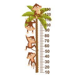 growth measure with monkey on palm vector image
