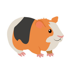guinea pig cartoon icon in flat design vector image vector image