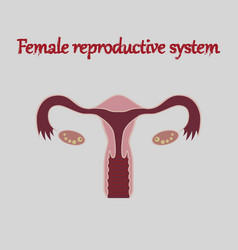 Human organ icon in flat style female reproductive vector
