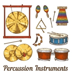 Percussion musical instruments vector