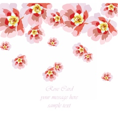 Delicate rose flowers card vector