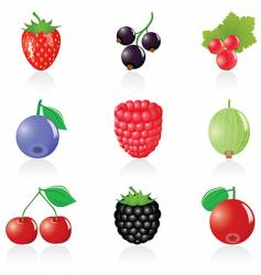 Berry icons vector