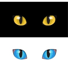 yellow cat eyes vector image