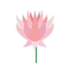 Lotus icon Indian Flower design graphic vector image