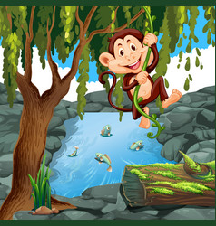 monkey climbing vine in forest vector image vector image