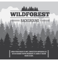 Wild coniferous pine forest outdoor nature vector