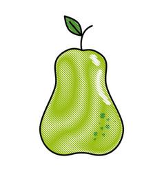 Pear fruit food vector