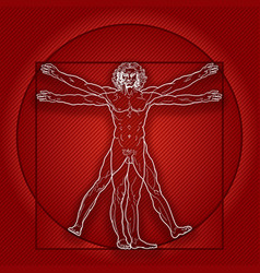 The vitruvian man homo vitruviano red version vector