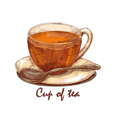 Colored hand drawn cup of tea vector