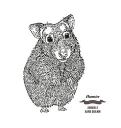 hand drawn hamster black ink sketch animal on vector image vector image