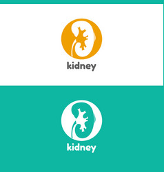 Human kidneys logo vector