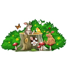 Rabbits and bugs in the garden vector