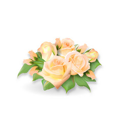 roses bouquet tea-rose delicate yellow pink vector image