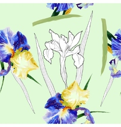 Seamless pattern with watercolor irises-04 vector