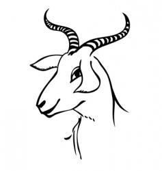 goat portrait vector image vector image