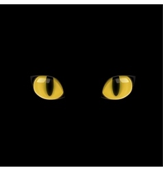 Yellow cat eyes vector