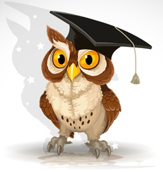 Wise owl vector