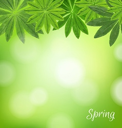 Spring poster vector