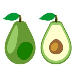 Avocado whole and half vector