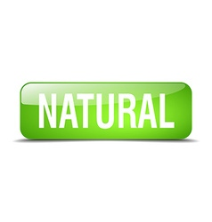 Natural green square 3d realistic isolated web vector