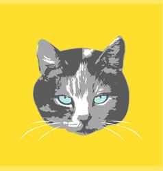 cats face cartoon seamless animal wallpaper vector image vector image