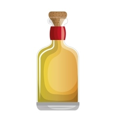 Mexican tequila bottle icon vector