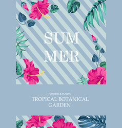 Summer time concept vector