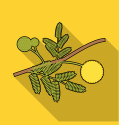 Yellow mimosa flower icon in flat style isolated vector