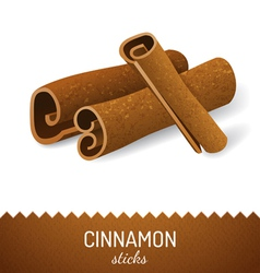 cinnamon icon vector image