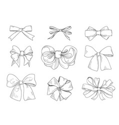 Bow set fashion accessory sign holiday gifts vector