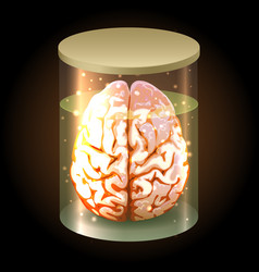 Brain in jar vector