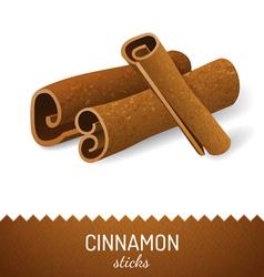 Cinnamon icon vector