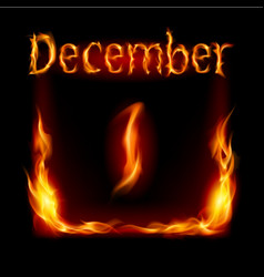 first december in calendar of fire icon on black vector image