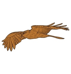 Sketch beautiful eagle on a white background vector