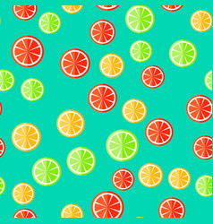 sliced fruit on a minty background vector image vector image