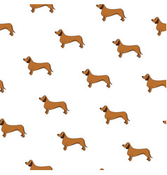 Unusual seamless pattern with cute dog breed vector