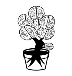 Brain in pot vector